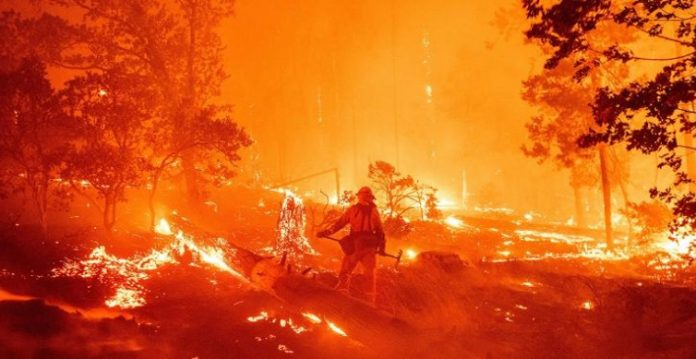 At Least 19 Killed and 3.2 Mln Acres Consumed in California Wildfires