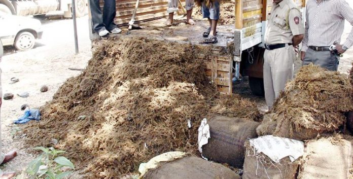 B'luru Police Officers Pose As Customers, Arrest Truck Driver With 110 Kg Ganja