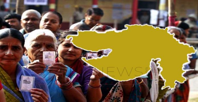 around 64% polling in local body elections in gujarat