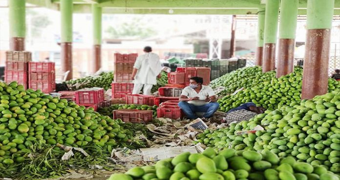 beware! mangoes in the markets may cost your health dearer