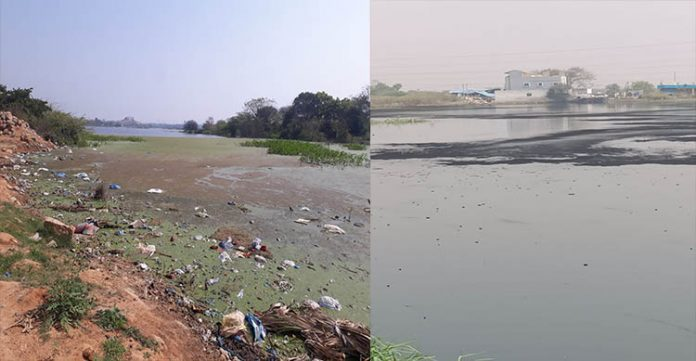 wounded by industrial waste jalpally lake cry for official empathy