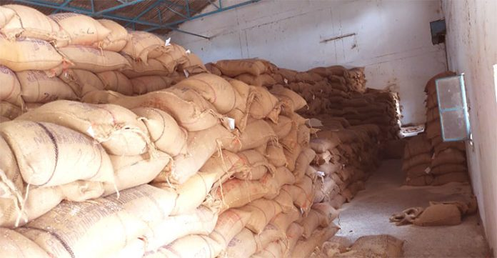 With no wheat and kerosene, fair price shops turned into rice shops