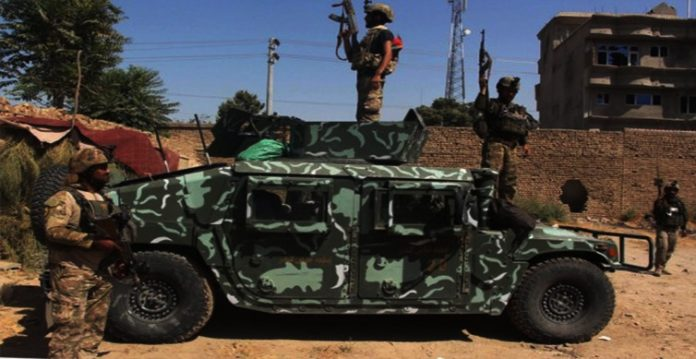 afghan offensives kill 100 taliban in 24 hrs